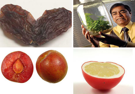 7 Intriguing Genetically Modified Fruits & Veggies