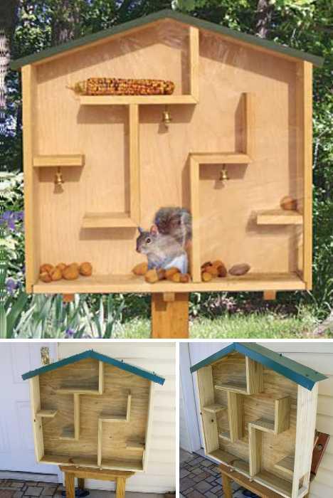 Nuts To Them! 8 Brilliant Backyard Squirrel Feeders ...