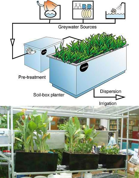 Off Grid Greywater System
