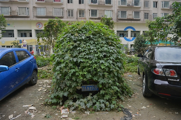 Really Green Vehicles: 7 Amazing Parked Zombie Cars