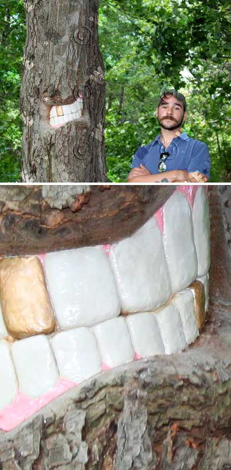 Bark With Bite: The Toothy Tree Art Of Patrick Catalde