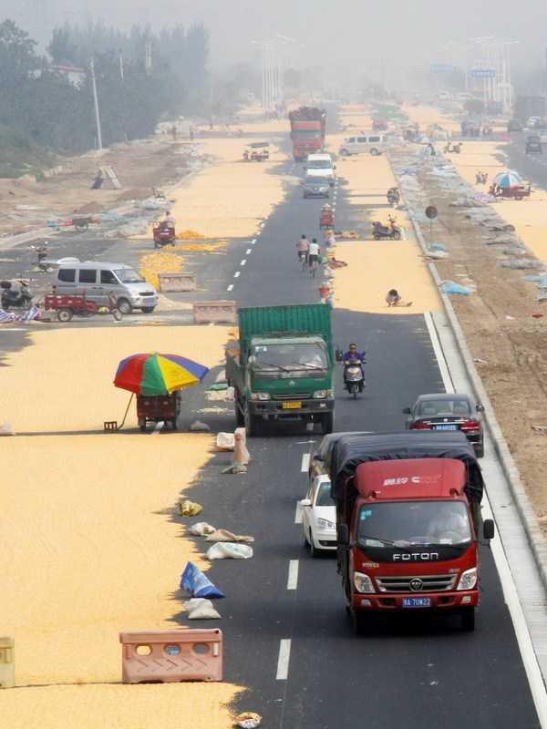 China's Corn Farmers Impound The Pavement