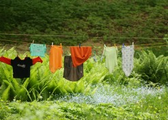Clean Green Laundry: 10 Eco-Friendly DIY Hacks & Tips