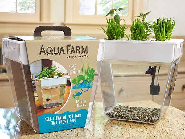 modern planters aquafarm 2