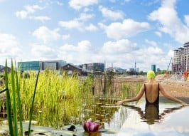 Natural Public Pool: UK Plans Freshwater Swimming Pond
