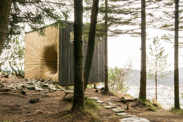 wood tunnel house 1
