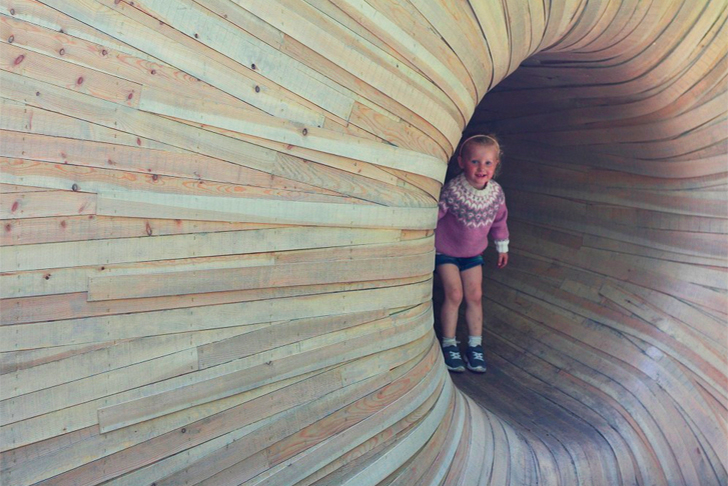 wood tunnel house 2
