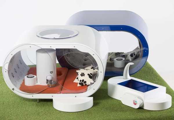 Samsung Dream Doghouse 11
