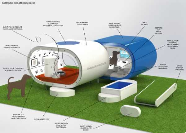 Samsung Dream Doghouse 7