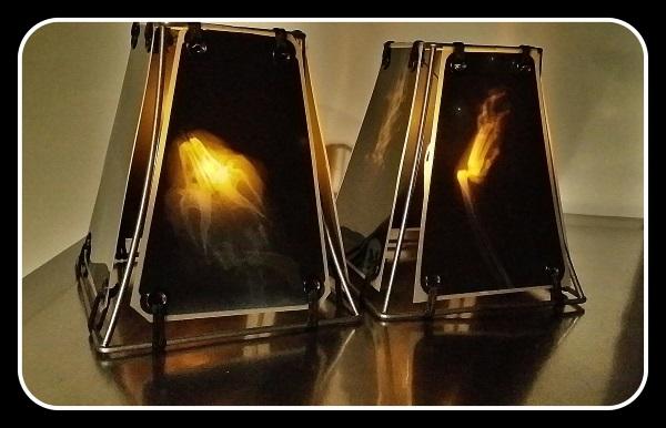 Animal X-Ray Lampshades 16