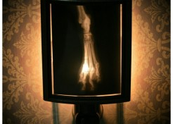 Monkeyshines: Spooky Animal X-Ray Lampshades