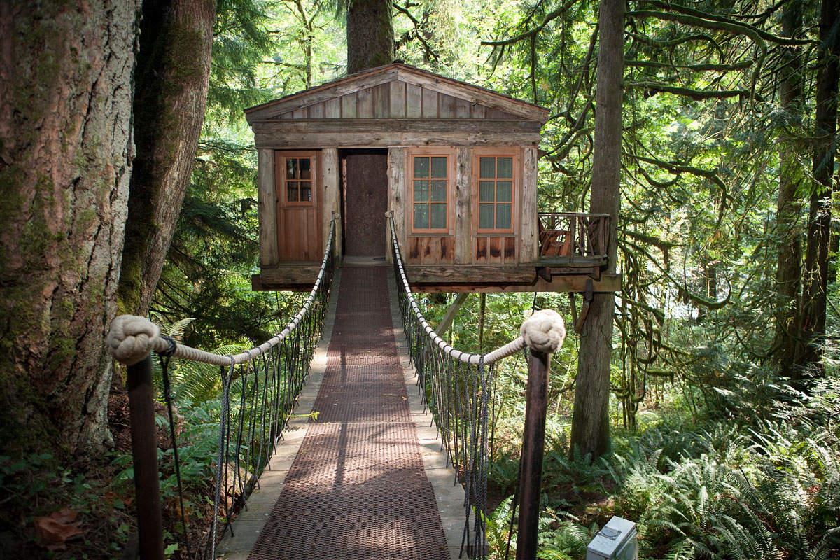 dream destinations treehouse point 1