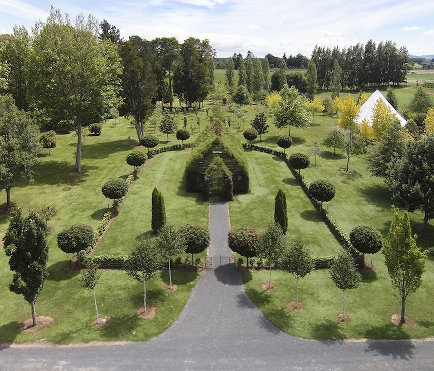 living trees church 1