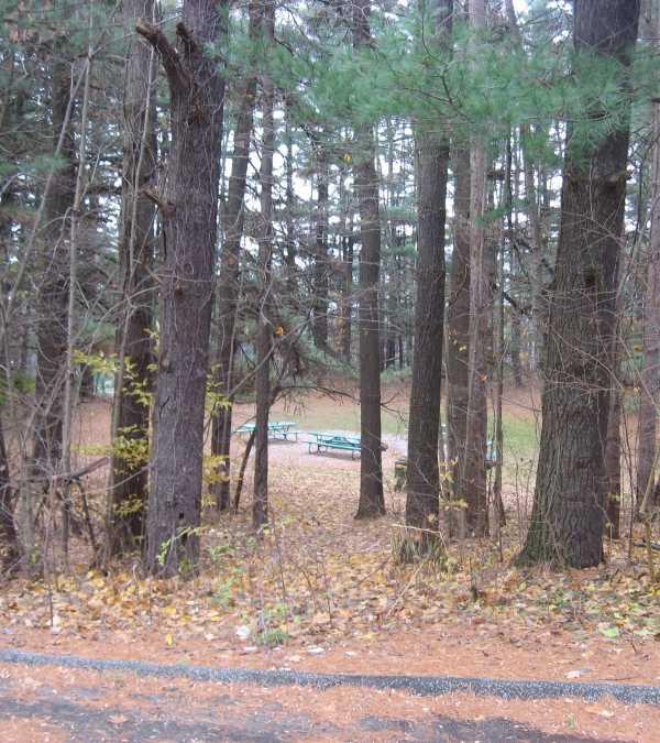 studebaker-tree-sign-4
