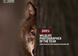 2015 Wildlife Photographer Of The Year Finalists