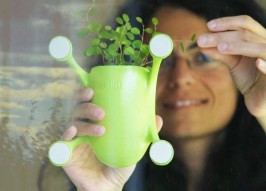 Stick It! Innovative Livi Suction Cup Planter