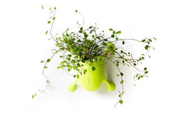suction-cup-planters-2