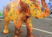 Trunk Culture: The Artful Herd Of Sheffield