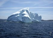 Frozen Grins: 10 Cool & Creepy Iceberg Faces