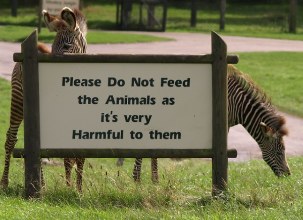 Crunch Time: 10 'Do Not Feed The Animals' Zoo Signs