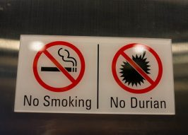 Fruitless: 10 Scents-sational 'No Durian' Signs