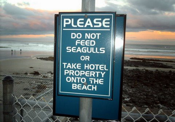 Sandy Clauses: 10 Bonkers Beach Rules Signs